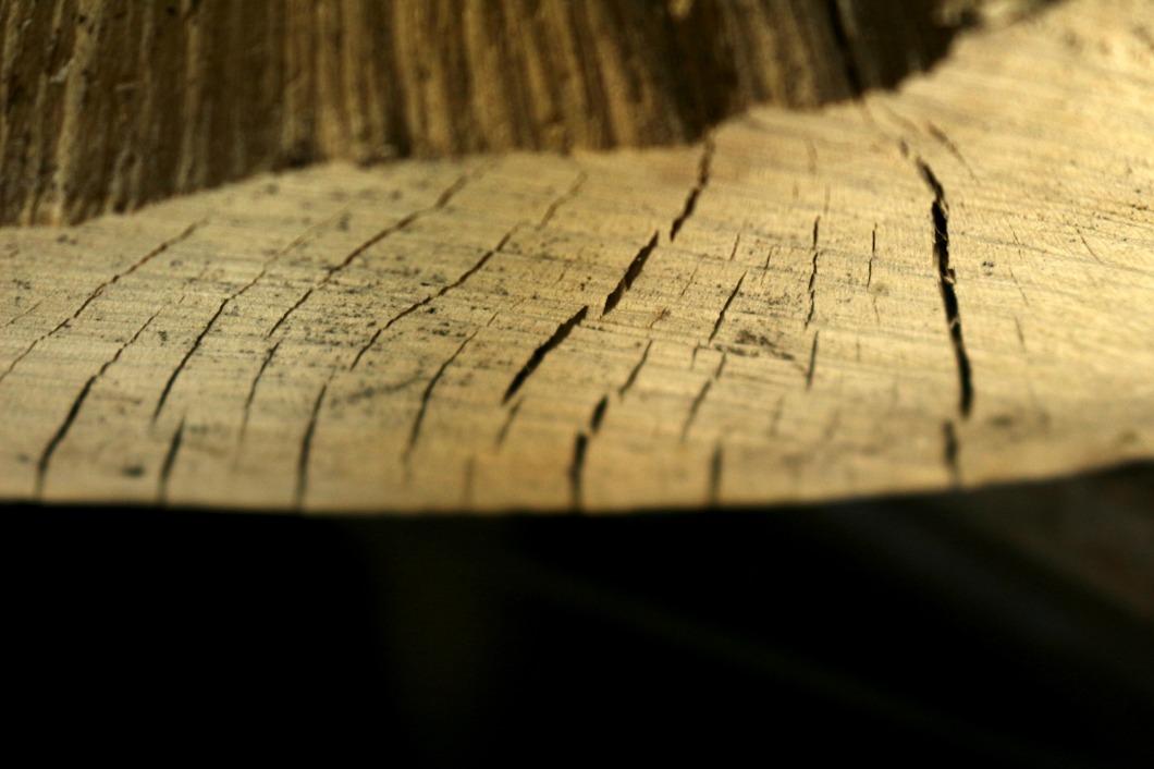 bois écologique.jpg