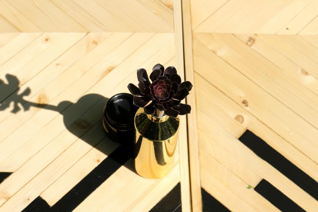 succulente et mobilier naturel birke studio.jpg